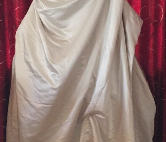 Ivory Size 10 Satin Fit & Flare Dress full