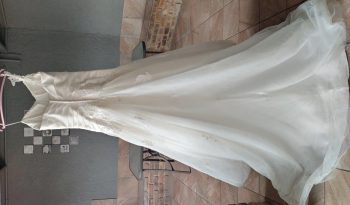 Ivory Size 14 Chiffon Ball Gown full